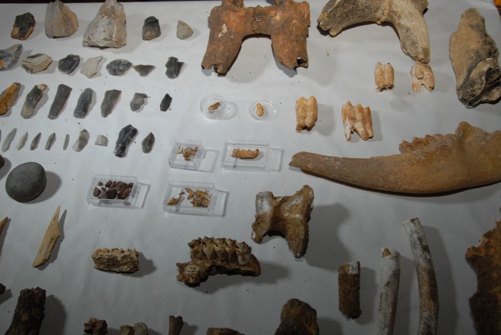 Imagen de los restos encontrados recientemente
