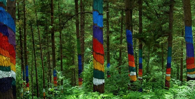 Bosque pintado de oma - Urdaibai