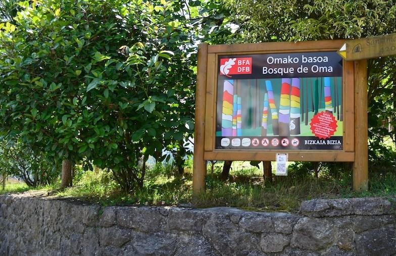 Bosque Encantado de Oma